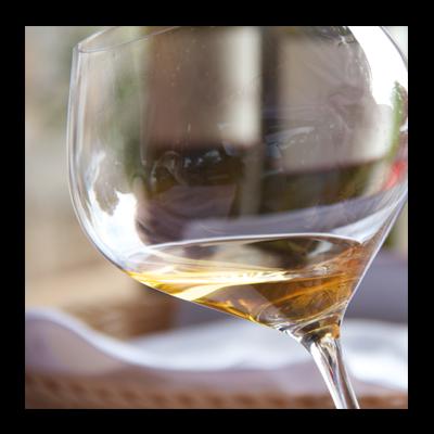 aprender a catar vinos