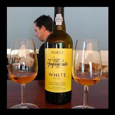 aprender sobre vinos